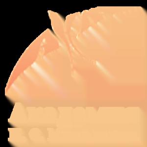 Академия кинематографического и театрального искусства Н.С. Михалкова г.Москва