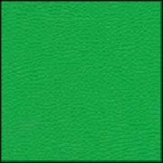 Зеленая (код:510)